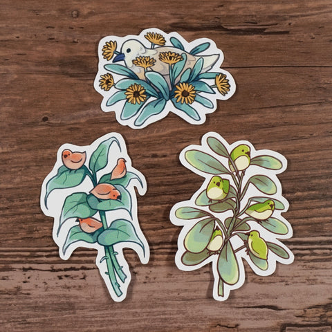 Plant Birds - Sticker set