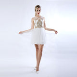 Embroidery Mesh Dress - White