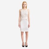 Drifter Lace Pencil Dress