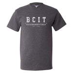Load image into Gallery viewer, BCIT Champion Hoodie/ T-shirt Bundle