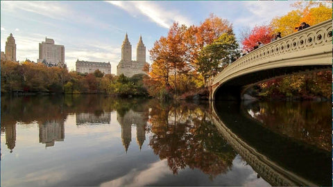 Its always a lovely day to take a walk in Central Park, NYC