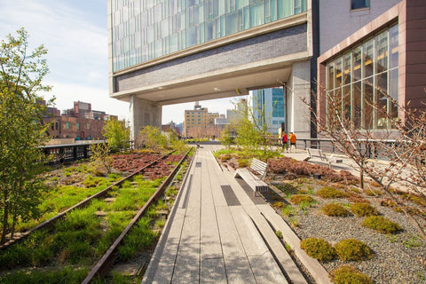 Grab an ice cold lemonade on a hot summer day and walk The High Line in NYC