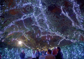 Family and friends taking a stroll at night during Christmas at the Celebration in the Oaks in New Orleans.