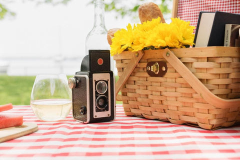 A lovely picnic setup near the water in a park with an old fashioned camera.