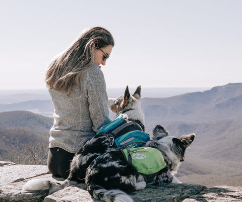 Young woman with her two dogs overlooking a gorgeous view at Shenandoah National Park, Virginia .