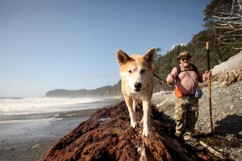Older man and his gorgeous puppy taking a walk through Olympic National Park, Washington.