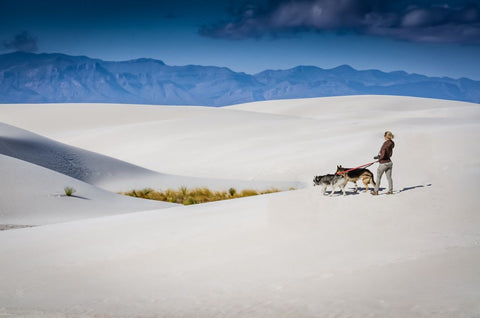 Young woman walking her two dogs through the never ending sand dunes at White Sands National Park, New Mexico.