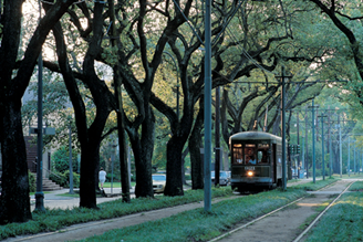 Cozy view of the St. Charles Ave Trolley in New Orleans.