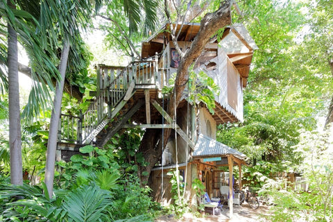 Tropical tree house in the lovely Miami Florida