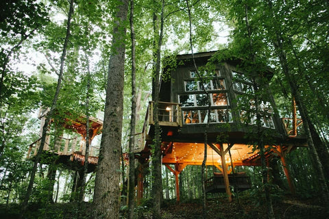 Beautiful over grown tree house in the woods