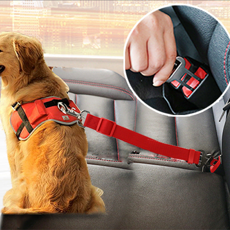 An image of a dog wearing the Dog Safety Seat Belt sold by Saint N Mike.