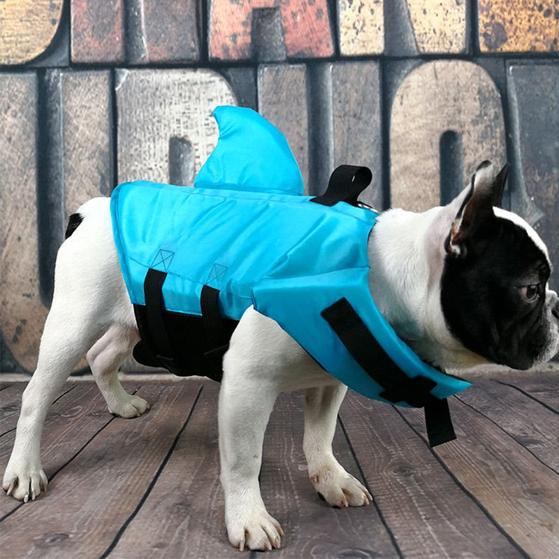 An image of a dog wearing the blue pet life jacket sold by Saint N Mike.