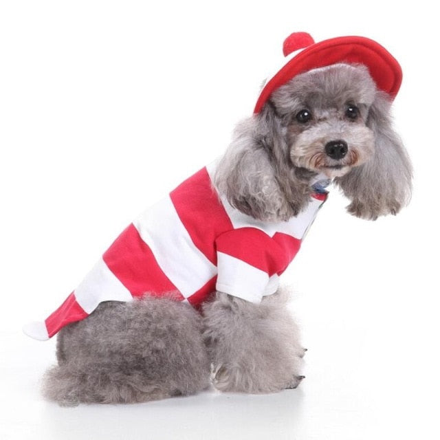 Pet Costumes for Halloween and Christmas