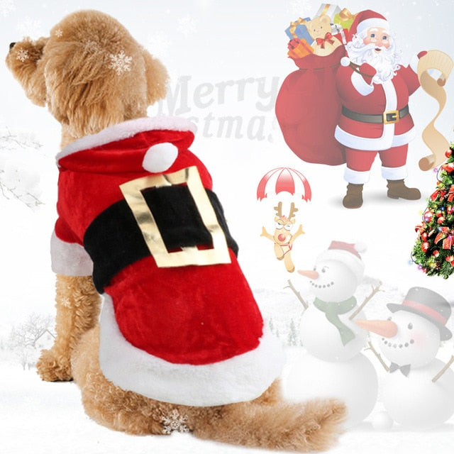 Christmas Inspired Dog Costumes & Outfits