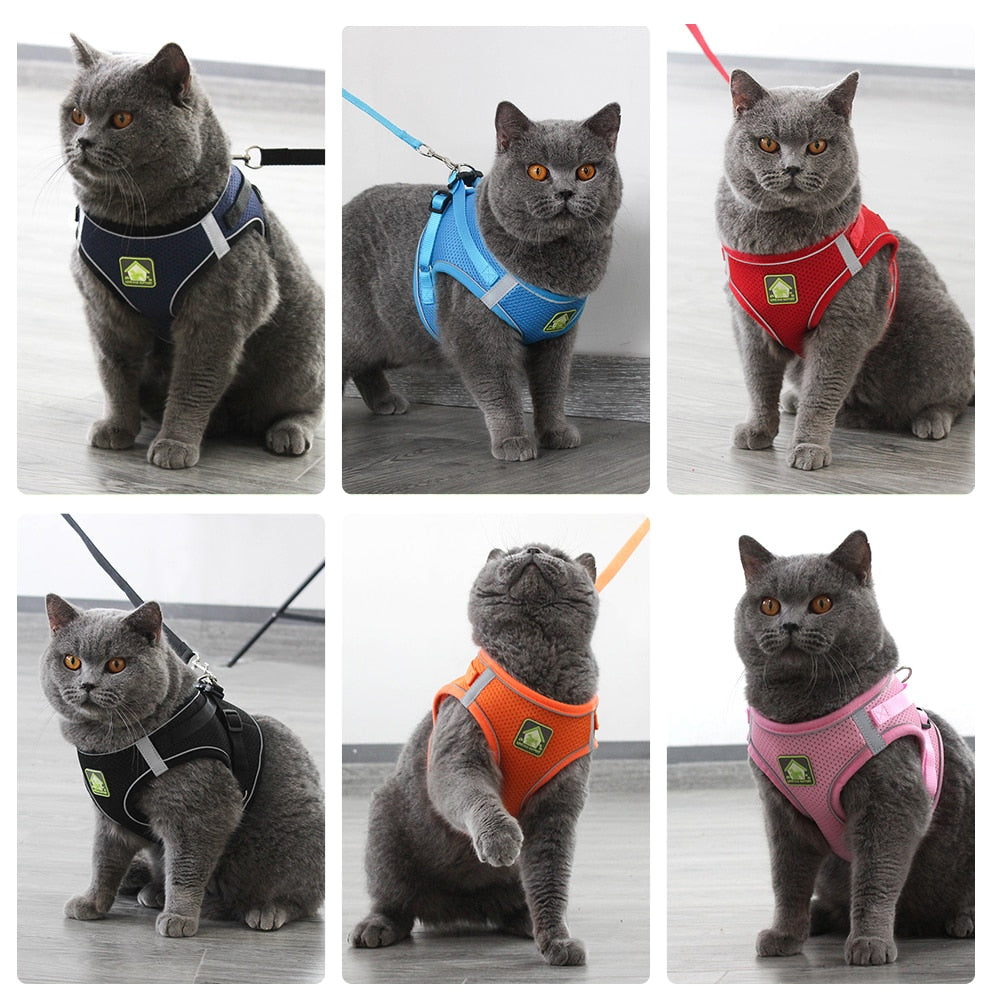 Reflective Cat Small-Dog Vest Harness