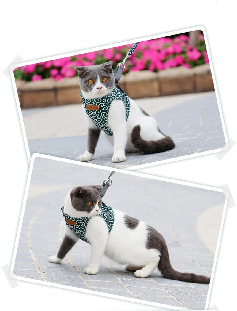 Cat Vest Harness Leash