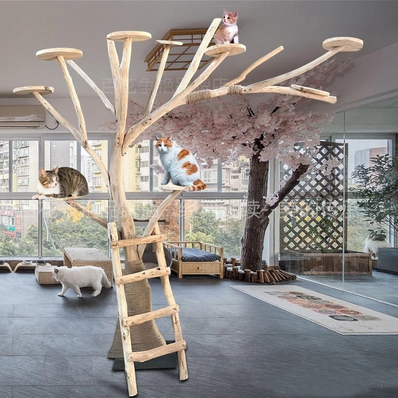 Photo of two cats enjoying the Tree Cat Climbing Frame sold by Saint N Mike.