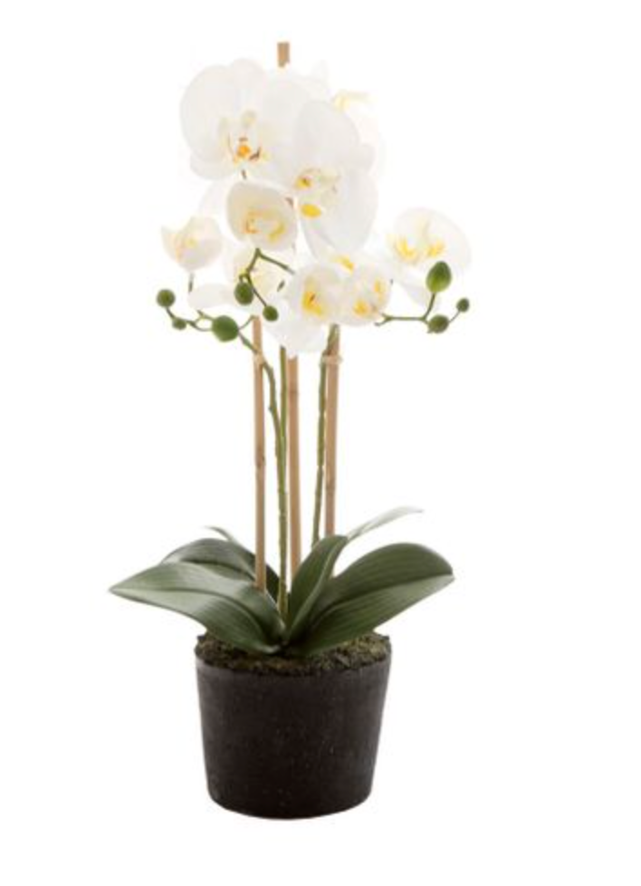 Artificial Phalaenopsis Orchid in paper pot 52cm