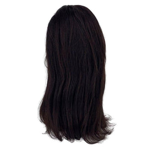 Straight 4x4 Closure Wig