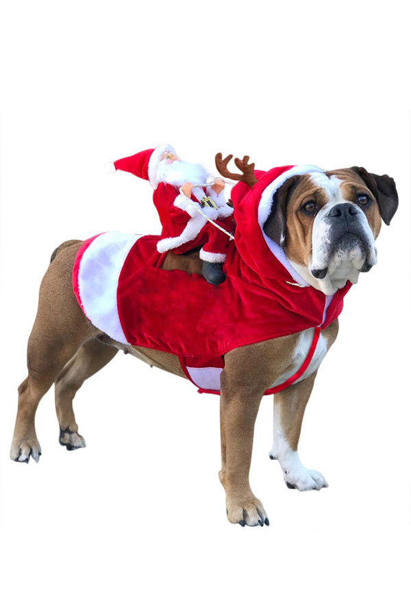 Christmas Santa Claus Dog Costume
