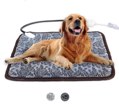 Dog lying on a floral electric heating pad bed