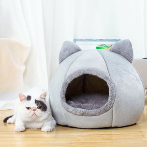 white cat beside a grey cat shaped pet bed