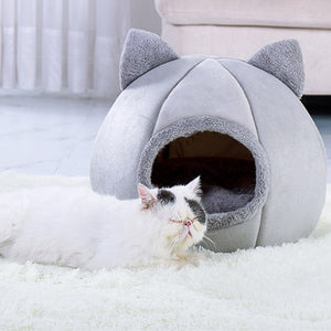 white cat in front of a grey cat shaped pet bed