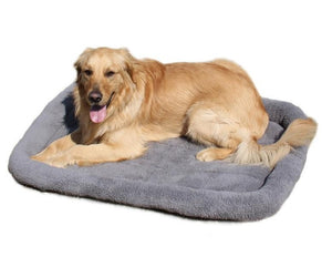 dog lying on a grey fleece pet bed
