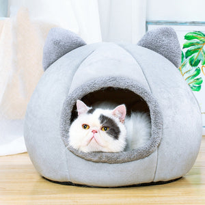 white cat in a grey cat shaped pet bed looking out