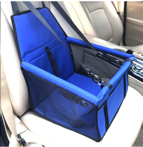 Blue puppy dog car seat in front seat of car.