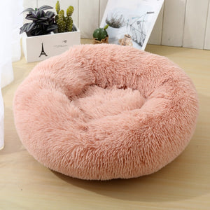 Pink pet bed on wood floor