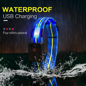 Waterproof LED Dog Collar - USB Rechargeable