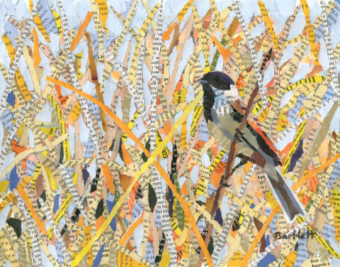 Paul Bartlett - Reed Bunting