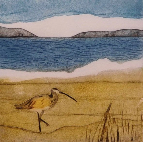 Sarah Ross-Thompson - Curlew Calling