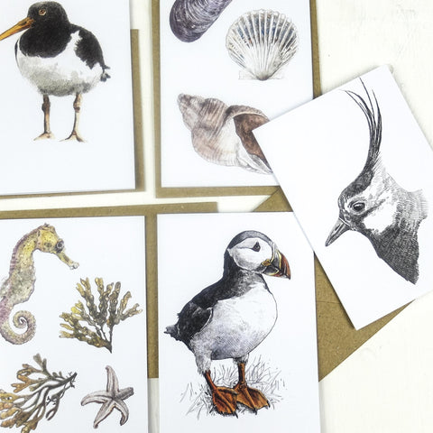 Hannah Longmuir - Mini Note cards