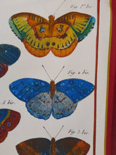 Load image into Gallery viewer, Colourful Butterflies Antique Print Tea Towel Red Border