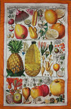 Load image into Gallery viewer, Exotic Fruit Tea Towel Antique Botanical Print 100% Cotton Bright Orange Border
