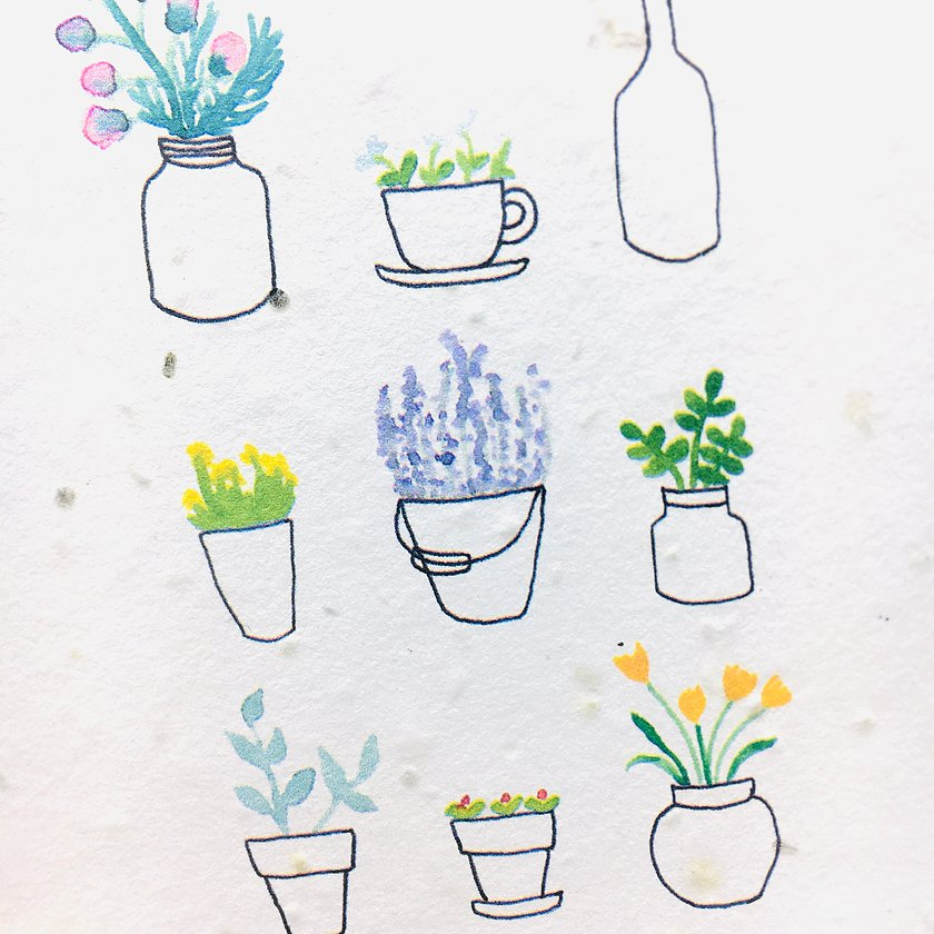 Ruby & Bo Plant Pots Seed Card