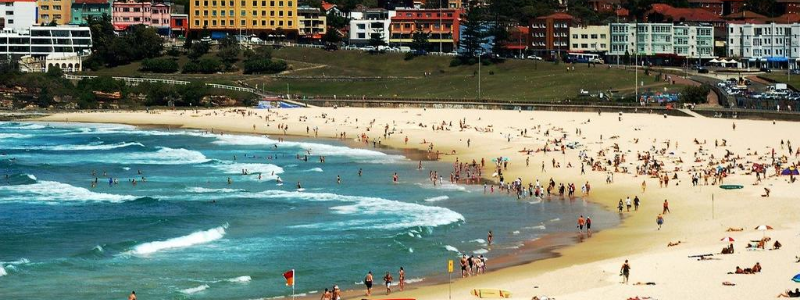 bondi surf beach nsw