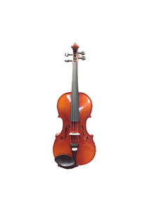 Reghin 4/4 Violin Outfit - Varsity Music Shop
