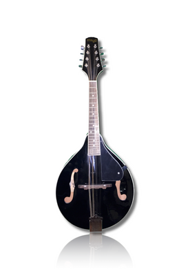 Stagg M20 - Black - Varsity Music Shop