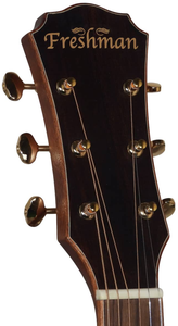 NEW Freshman 20th Anniversary Series FALTDSPRD All-Solid Dreadnought Electro-Acoustic Guitar - Varsity Music Shop