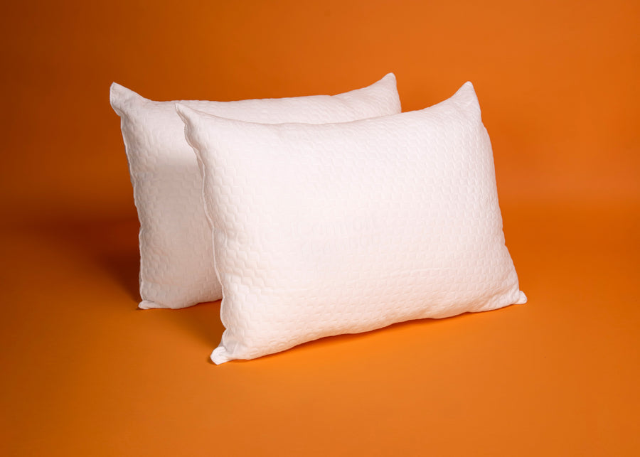 2 Pack Bamboo Pillows