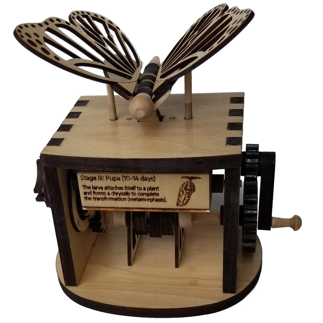 Front facing view of assembled butterfly automaton on white background. Shows one of the butterfly facts that display while cranking wheel.