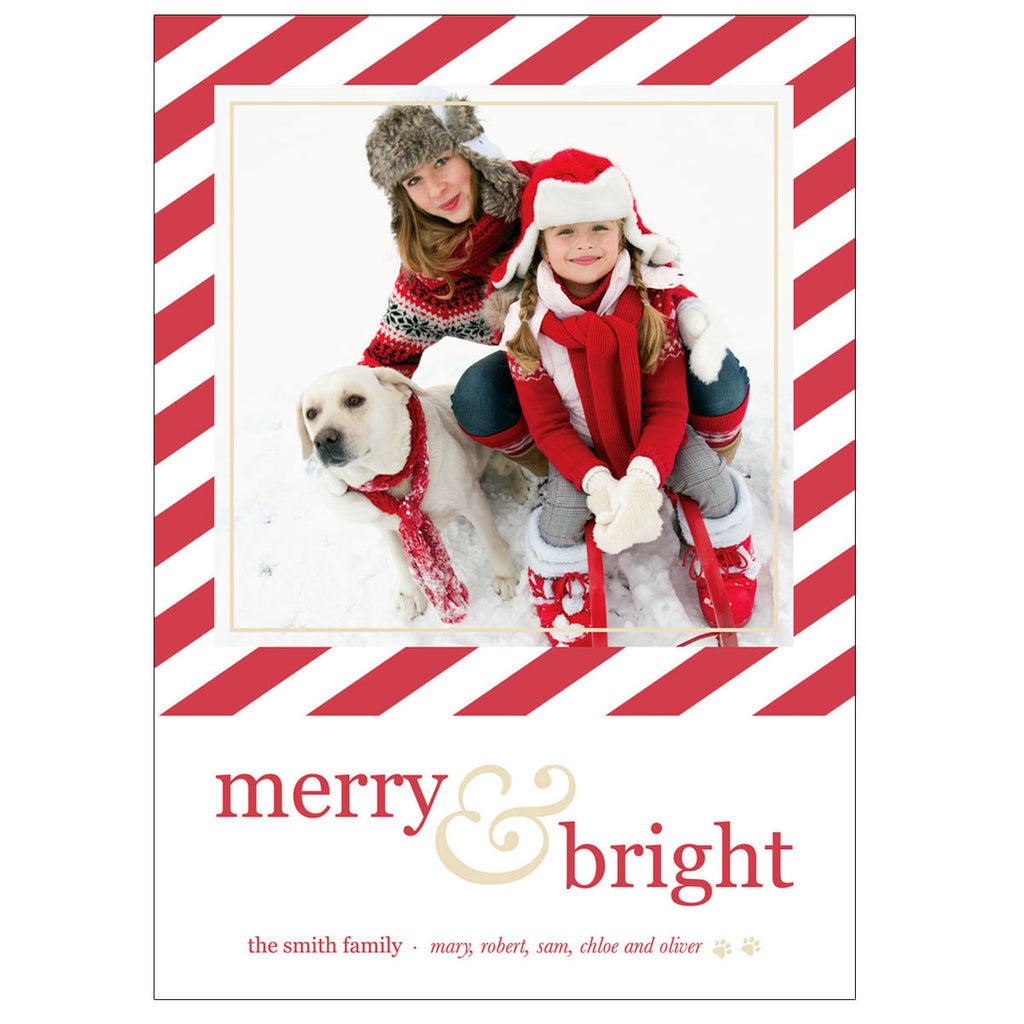 Pet Themed Christmas Photo Cards