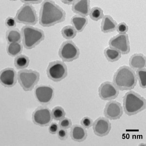 Silica Shelled Silver Nanoplates, Peak Absorbance @ 750 nm