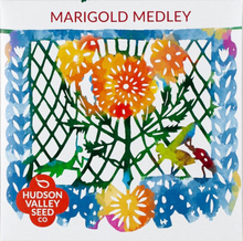 Load image into Gallery viewer, Marigold Medley Seeds
