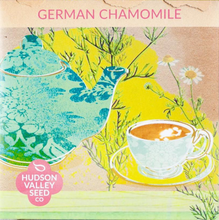 Load image into Gallery viewer, German Chamomile Seeds