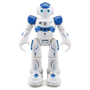 Intelligent RC Robot - Marys Little Mart