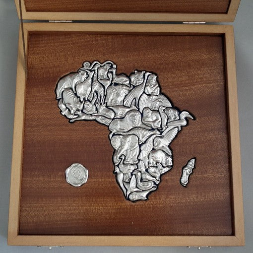 The African Puzzle